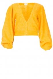 Liu Jo |  Knitted cardigan Jara | yellow  | Picture 1