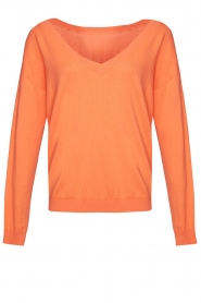Les Favorites |  Basic cotton sweater Day | orange  | Picture 1