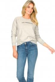 Les Favorites | Basic katoenen sweatshirt Posy | grijs   | Afbeelding 2