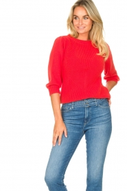 Les Favorites |  Knitted cotton sweater Scotty | red  | Picture 2