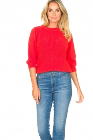 Les Favorites |  Knitted cotton sweater Scotty | red  | Picture 5