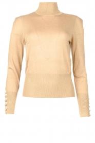 Liu Jo |  Lurex turtle neck sweater Sofia | gold  | Picture 1