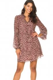Liu Jo    Dress with animal print Irene   pink    Picture 5