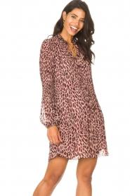 Liu Jo    Dress with animal print Irene   pink    Picture 4