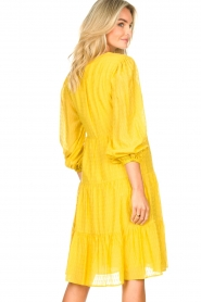 Set |  Printed midi dress Irem | yellow  | Picture 7