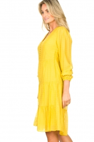 Set |  Printed midi dress Irem | yellow  | Picture 6