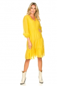 Set |  Printed midi dress Irem | yellow  | Picture 3
