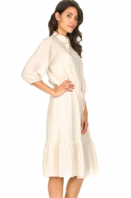 Set |  Midi dress with crepe effect Rosa | natural  | Picture 5