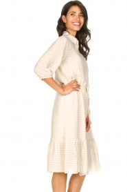 Set |  Midi dress with crepe effect Rosa | natural  | Picture 6