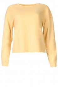 Blaumax |  Soft sweater Ash | yellow  | Picture 1