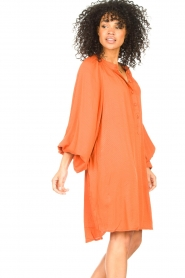 Genesis |  Tunic dress Sofia | orange  | Picture 5