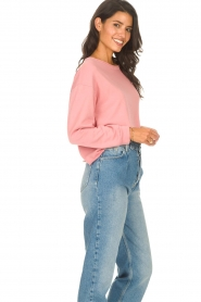 Blaumax    Soft sweater Ash   pink    Picture 5