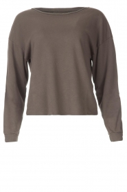 Blaumax |  Soft sweater Ash | grey  | Picture 1