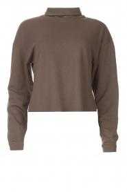 Blaumax |  Basic sweater Ash | grey  | Picture 1
