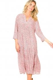 JC Sophie |  Floral midi dress Georgia | pink  | Picture 4