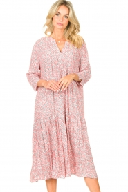 JC Sophie |  Floral midi dress Georgia | pink  | Picture 5