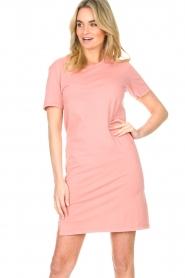 Blaumax |  Organic cotton T-shirt dress Cayman | pink  | Picture 5