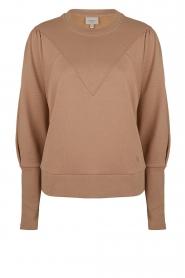 Dante 6 |  Sweater Beau | camel  | Picture 1