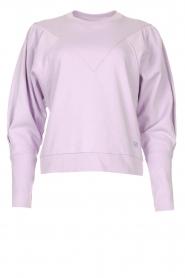 Dante 6    Cotton sweater Beau   purple    Picture 1