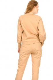 Dante 6 |  Cotton sweater with logo Bold | camel  | Picture 7