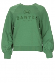 Dante 6 |  Cotton sweater with logo Bold | green  | Picture 1