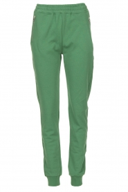 Dante 6 |  Sweatpants Toron | green  | Picture 1