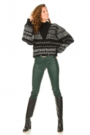 Dante 6 |  Lamb leather pants Campbell | green  | Picture 4