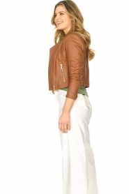 STUDIO AR BY ARMA |  Short leather jacket Gaga | camel  | Picture 5
