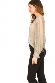 Lolly's Laundry |  See-through top with lurex Bar | gold  | Picture 6