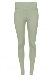 Lune Active |  Rib leggings Luna | green
