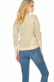 Liu Jo |  Openwork sweater Fay | gold  | Picture 7
