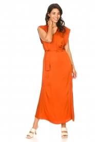 Dante 6 |  Maxi dress with crepe effect Jasiel | orange  | Picture 4