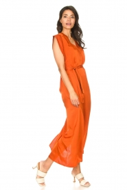 Dante 6 |  Maxi dress with crepe effect Jasiel | orange  | Picture 3