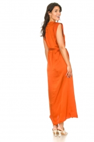 Dante 6 |  Maxi dress with crepe effect Jasiel | orange  | Picture 6