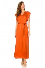 Dante 6 |  Maxi dress with crepe effect Jasiel | orange  | Picture 3