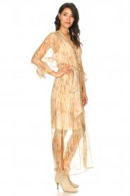 Dante 6 |  Maxi dress with silk Nilsine | natural  | Picture 4