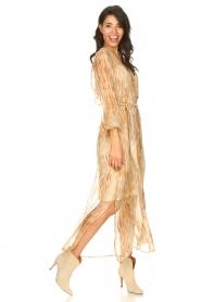 Dante 6 |  Maxi dress with silk Nilsine | natural  | Picture 3