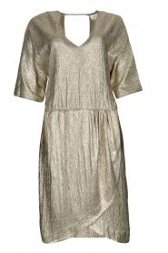 Dante 6 |  Metallic dress Dallas | silver  | Picture 1
