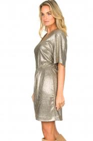Dante 6 |  Metallic dress Dallas | silver  | Picture 4