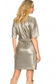 Dante 6 |  Metallic dress Dallas | silver  | Picture 5