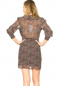 Freebird |  Dress with ruffles Healy | brown  | Picture 7