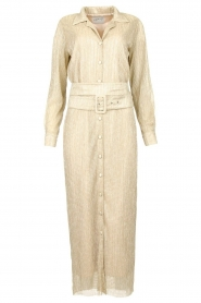 CHPTR S |  Luxe maxi dress Frost  | Picture 1