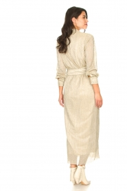 CHPTR S |  Luxe maxi dress Frost  | Picture 7