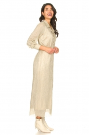 CHPTR S |  Luxe maxi dress Frost  | Picture 5