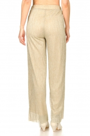 CHPTR S |  Wide lurex pants Rocky | gold  | Picture 6