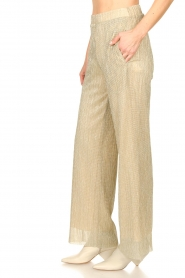 CHPTR S |  Wide lurex pants Rocky | gold  | Picture 5