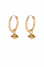 Rijkje Jewelry |  14k gold-plated earrings Mouth | gold  | Picture 1