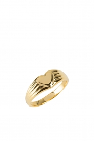 Rijkje Jewelry |  14k gold-plated ring Heart | gold  | Picture 1