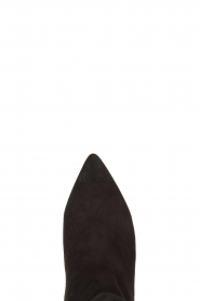 Toral :  Suede ankle boots with buckle detail Ice | black - img5
