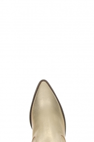 Toral |  Leather ankle boots Elisio | gold  | Picture 5